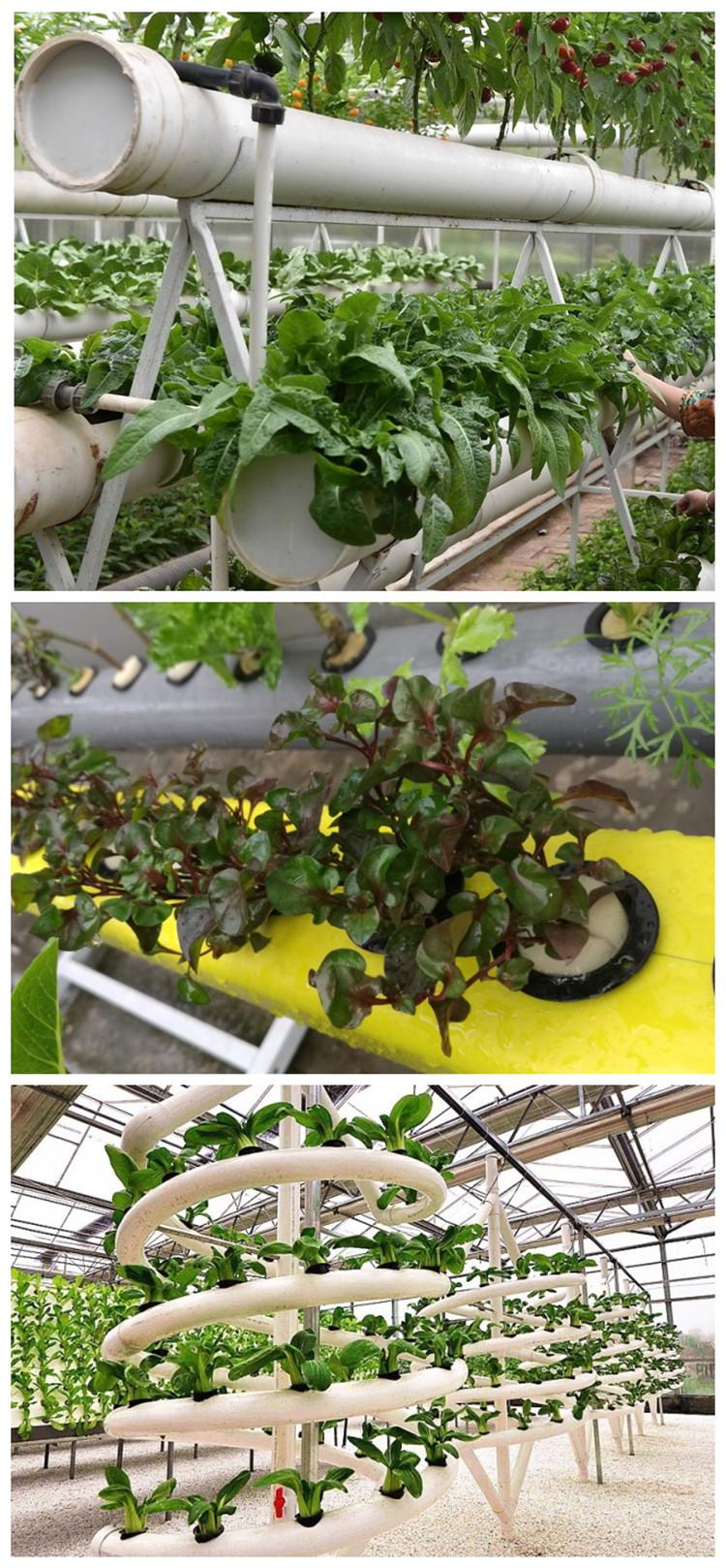 草莓种植篮