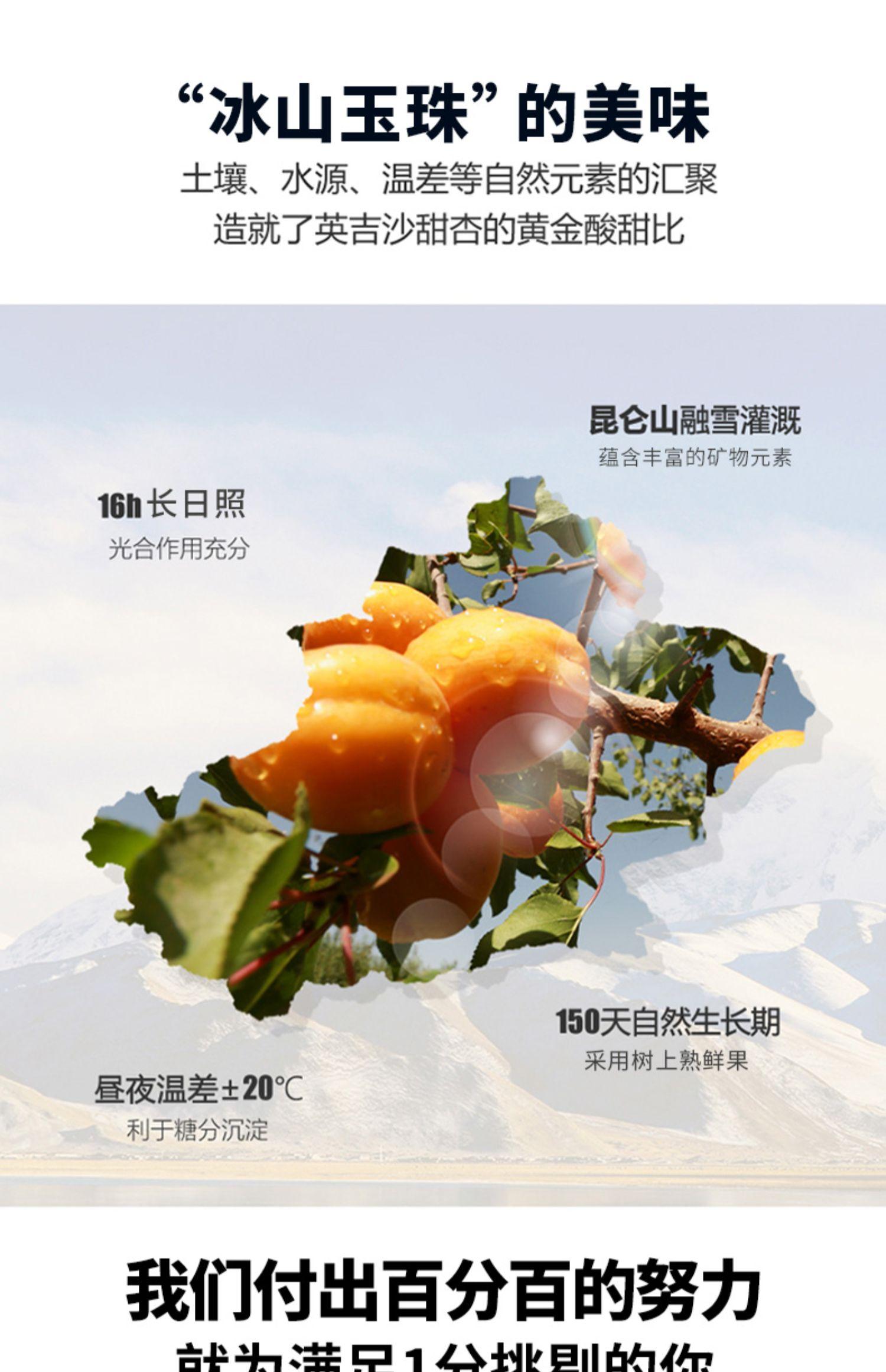 【李佳琦推荐小小的我】独立包装新疆甜杏肉