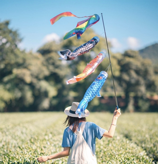 Hot selling carp streamer tassels children's toys sail ornaments guide flags Japanese and wind streamers restaurant decoration flags