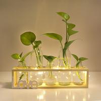 Скандинавская зеленая редька новый Гидропонный стеклянный флакон домашние Цветовое оформление гостиной