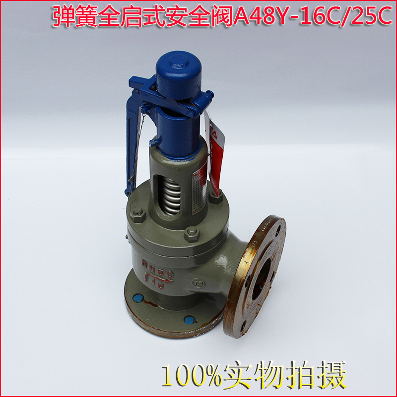 A44Y A48Y Flanged type Spring loaded safety valve 3
