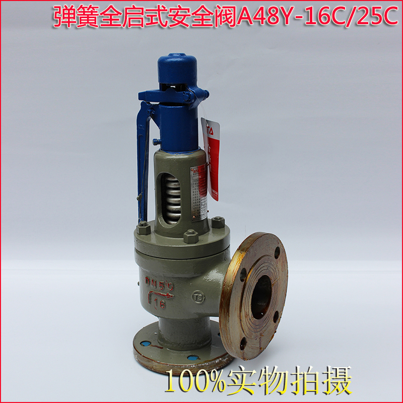 A44Y A48Y Flanged type Spring loaded safety valve 2