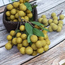 Simulation fruit fake longan longan model props food, vegetables and fruits window decorations model decoration shooting