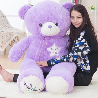 Plush toy hug Teddy bear doll lavender bear doll to send female birthday gift sleep pillow