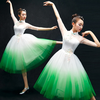 Chinese Folk Dance Costumes Classical Dance Costume opening dance dress performance Dress Adult modern dance partner long skirt