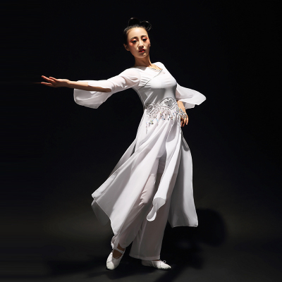 Chinese Folk Dance Costumes Classical Dance Costume, Female Practitioner Gongfu, Fairy Adult Modern Dance Costume Fan Dance
