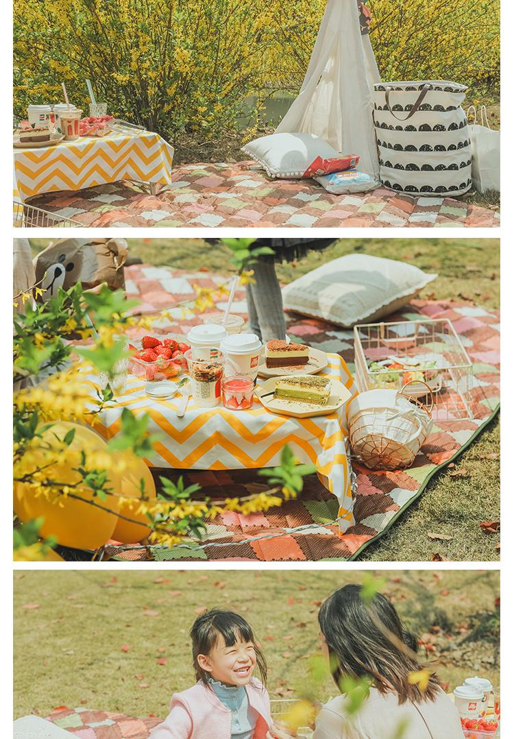 奥佩尔野餐垫户外野炊防潮垫加厚可携式防水地垫帐篷垫沙滩垫野餐布详细照片