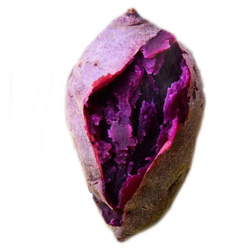 沙地紫薯新鲜 番薯板栗红薯地瓜蜜薯蔬菜