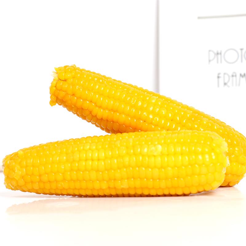 玉米新鲜黄糯玉米真空包装甜黏糯玉米棒非转基因有机速食玉米10棒