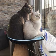 Лежанка для животных Окна подоконник Китти