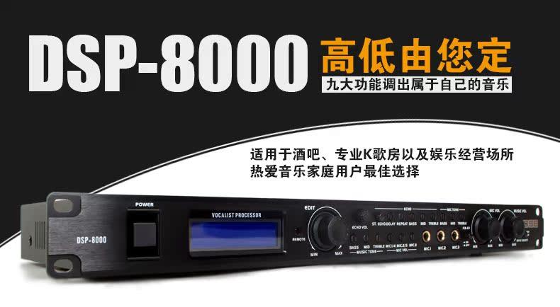 DSP8000_01.jpg