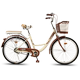 Bicycle Women Adult ordinary commuter bicycle city retro to work light adult girl car for boys and girls