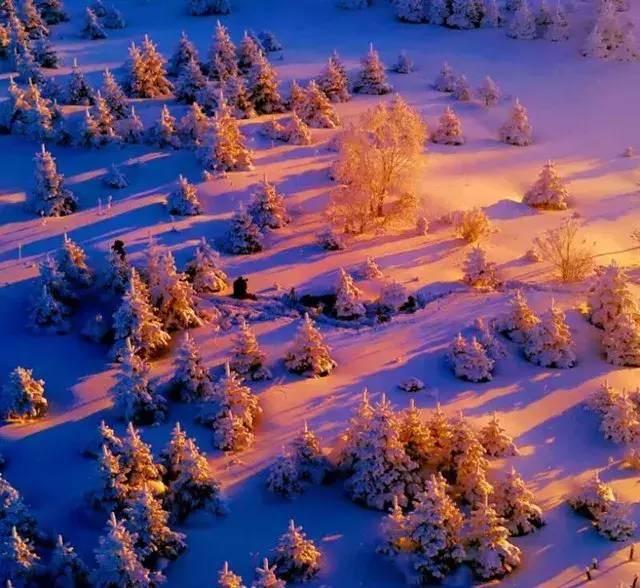 中国有个地天蓝让人流泪白森林仙