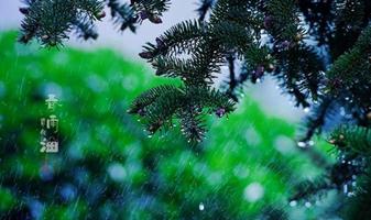 春雨白噪音