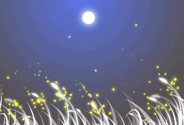 小米APP中5个优秀的白噪音 海滩 森林 春雨 炉火 夏夜
