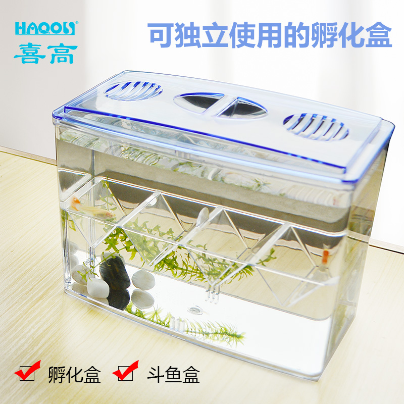 多功能鱼苗鱼孵化盒小鱼亚克力v鱼苗盒繁殖产卵孔雀小产房幼大鱼缸