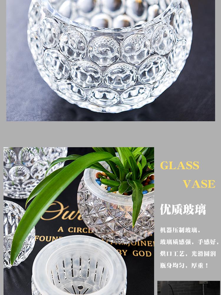 白掌花盆黄金葛水培器皿玻璃透明水培植物容器吊兰铜钱草多肉圆形瓶详细照片