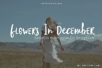 有趣的手写字体 Flowers In December Font Collection