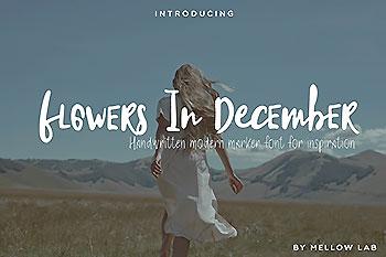 有趣的手写字体 Flowers In December Font Collection