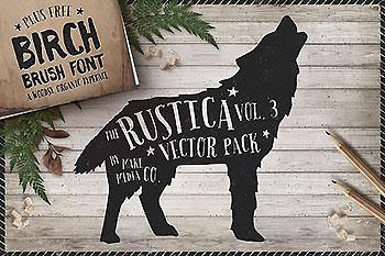 大气的手绘笔刷字体素材 Rustica Vol. 3 + Birch Brush Font
