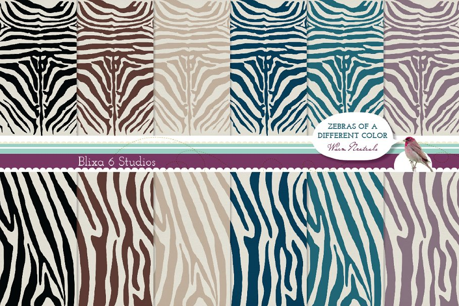 zebra-sample3-.jpg