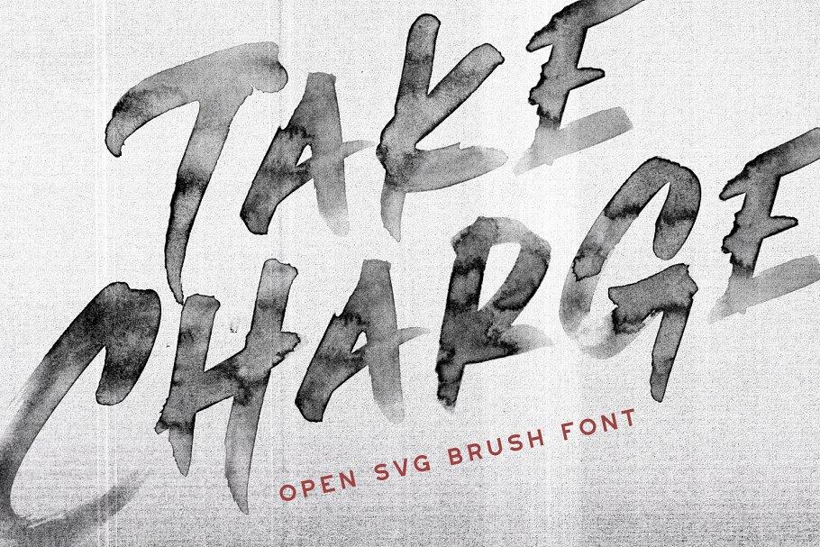 水墨手写字体 Take Charge – OpenType SVG Font设计素材模板