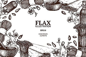 经典亚麻插画 Vintage Flax Illustrations