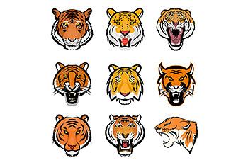 老虎头部插画矢量图标 9 Tiger Face Vector Illustrations