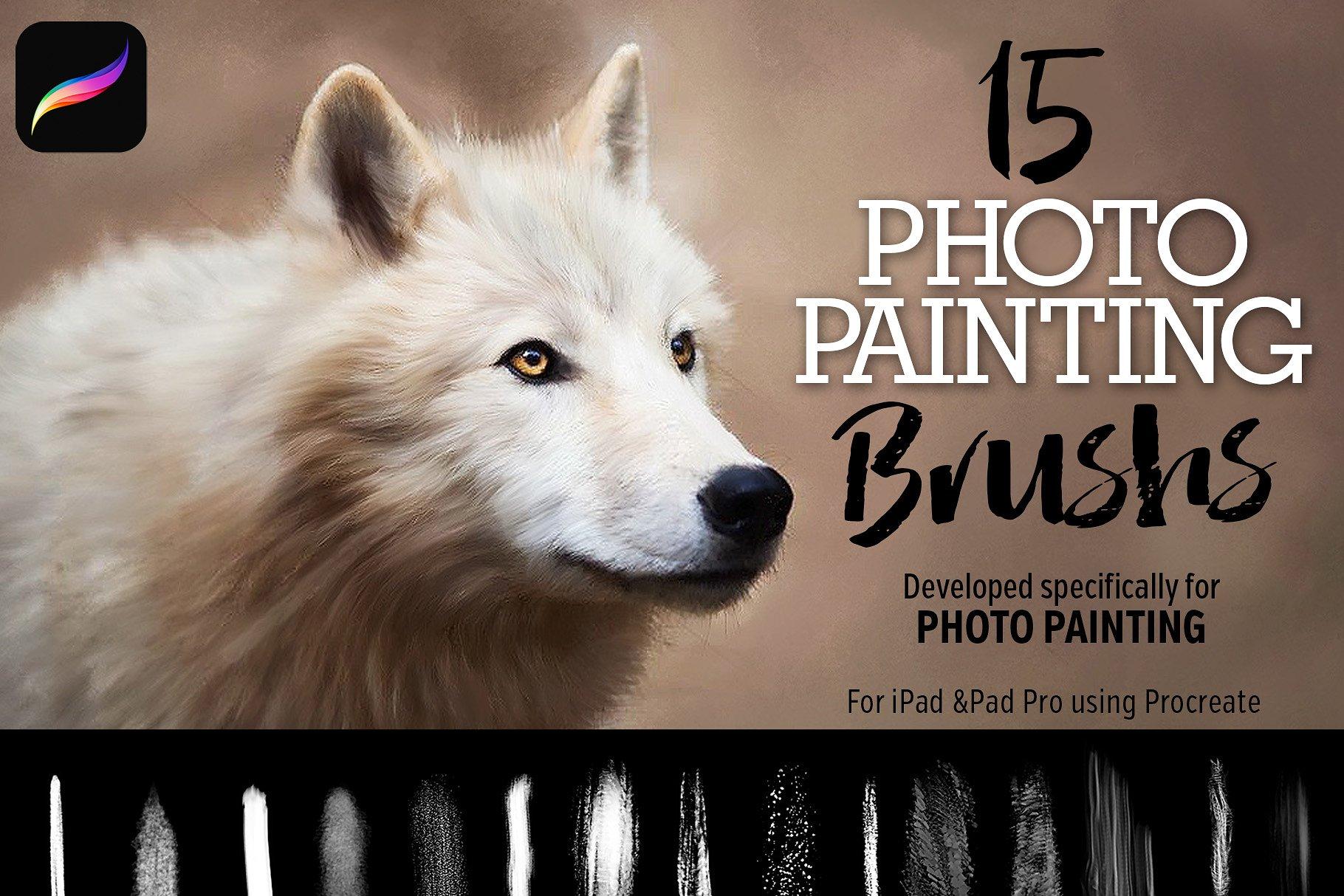 iPad 专用15个彩绘笔刷下载 15 Photo Painting Brushes [brush]设计素材模板
