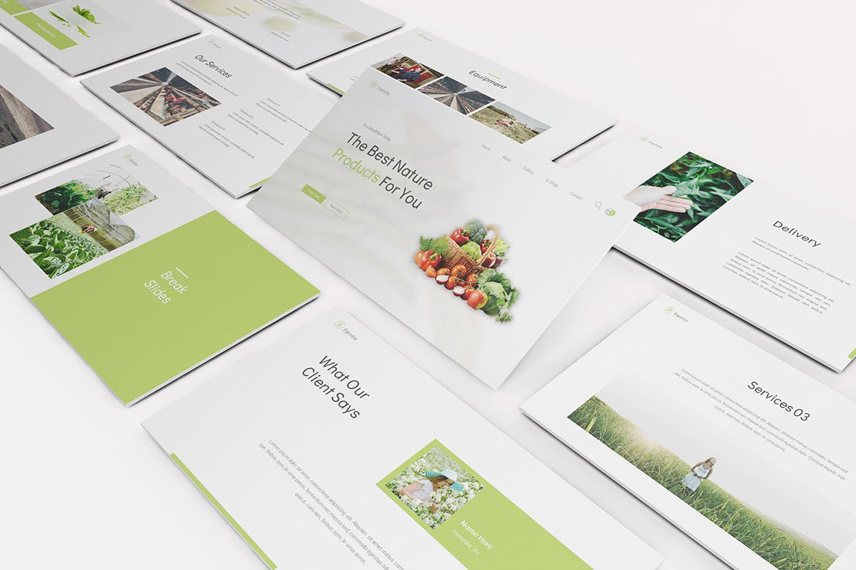 高端时尚清新简约绿色健康农业Google Slides谷歌幻灯片演示模板(pptx)设计素材模板
