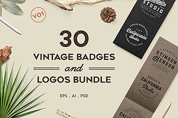 Logo图标设计复古徽标模板 Vintage Badges and Logos Bundle V01