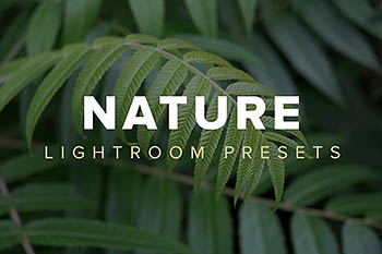 风景滤镜lightroom预设lightroom预设下载