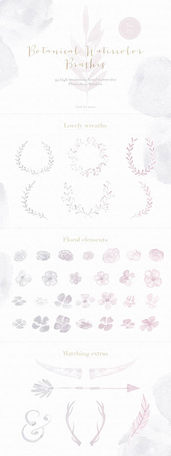 水彩花卉笔刷 Floral Watercolor Photoshop Brushes