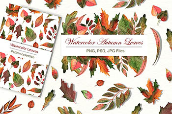 秋季落叶水彩元素插画设计素材
