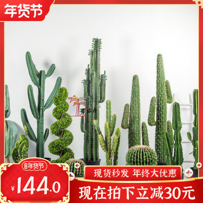 Chernascus 2020 new Nordic INS simulation small fairy column ball palm feet tropical potted indoor green plant