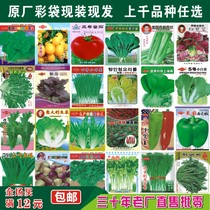 Seed gardening indoor potted organic vegetable seed fruits and vegetables Four seasons sowing vegetable