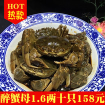 Shunfeng all have ointment yellow Shaoxing Shang Specialty Drunken Crab