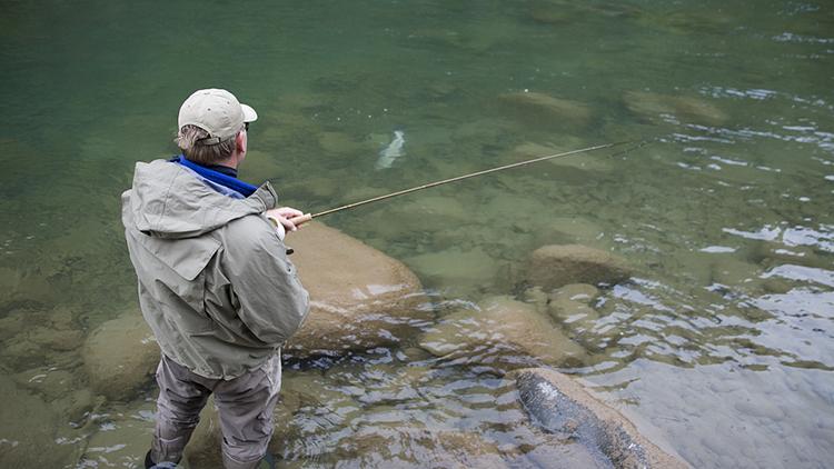 钓肥水需掌握的技巧,了解后渔获满满!