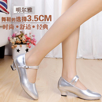 Womens Latin Dance shoes female adult square dance shoes modern dance shoes dance shoes