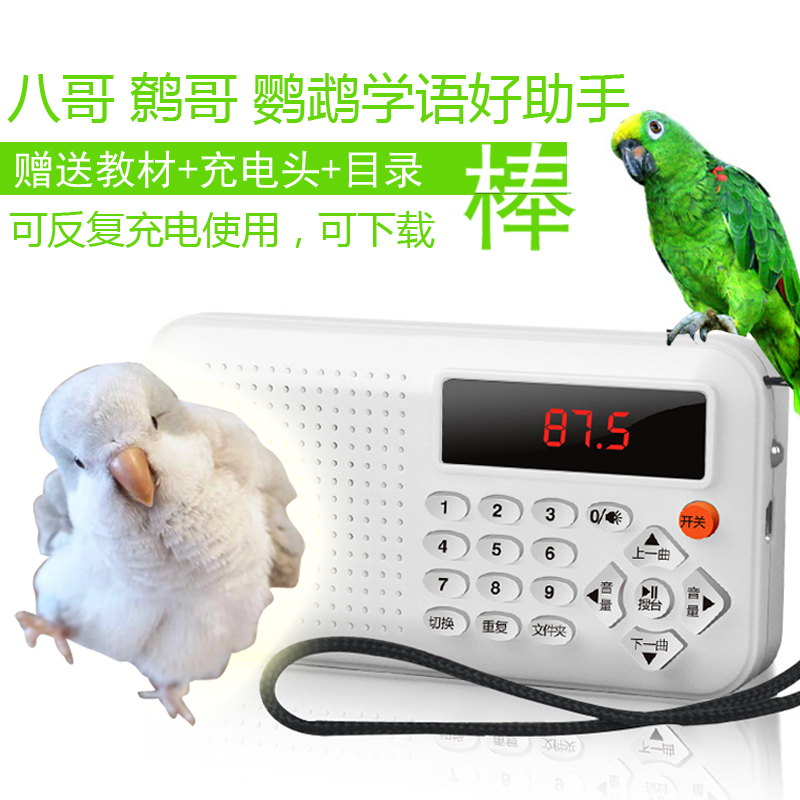 Птица обучения машина попугай обучение машина скворца обучения машина повторения машины 鹩 哥 записи обучения речи язык обучения