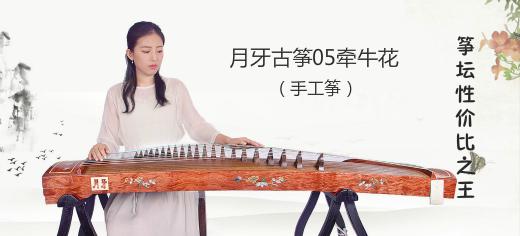 """月牙05牵牛花——筝坛""""性价比之王"""""""