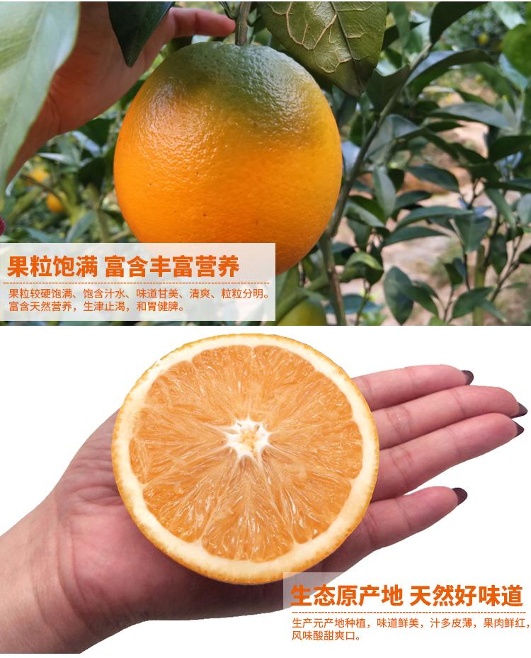 正宗赣南脐橙郑州销售处,赣南脐橙春节应季好水果