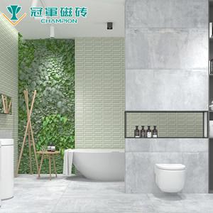 冠军瓷砖  3DWALL 室内卫浴客厅厨房墙砖 250*750 椰奶白