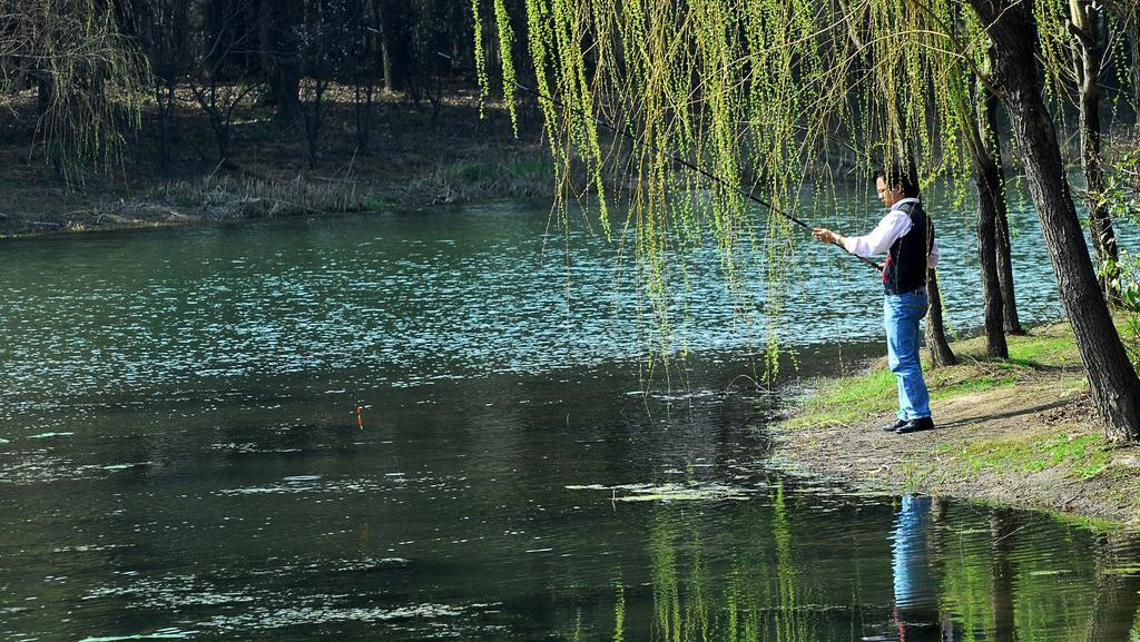 刮风天钓鱼,选择钓位非常重要