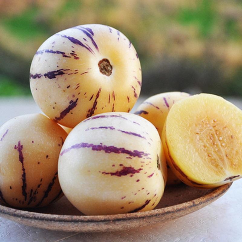 和小墨云南石林树上熟人参果5斤中大果黄肉圆果当季新鲜高原水果