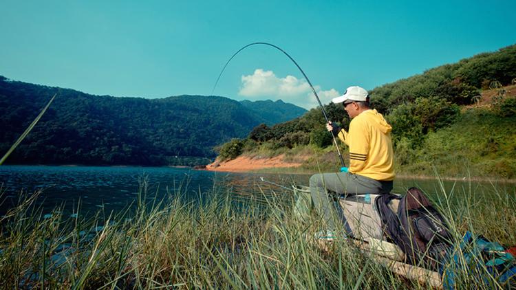 野钓鲤打窝是关键,分享3个野钓鲤的方法