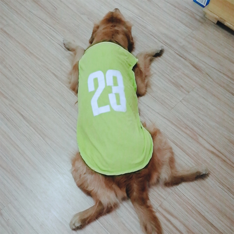 (GREEN) NO. 23 SPORTS VEST (WITHOUT SLEEVES)