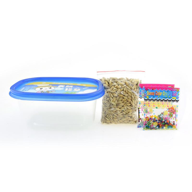 猫草种子水培猫薄荷猫零食猫咪用品