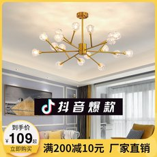 Post-modern light luxury chandelier living room magic bean lamp lighting simple crystal lamp dining room bedroom Nordic branch molecular lamps
