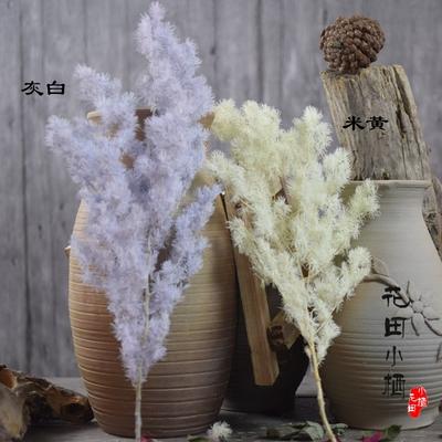 干花永生花束田园风室内装饰配草艺术插花拍摄道具树枝